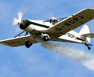 Târgoviște, 26-31 august: pulverizare aeriană pentru combaterea insectelor de disconfort!