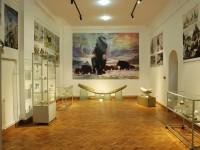 Expoziție spectaculoasă la Târgoviște: fildeși de mamut și artefacte de 20.000 de ani!