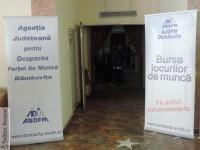 Dâmbovița: 569 de persoane prezente la Bursa Generală a Locurilor de Muncă!