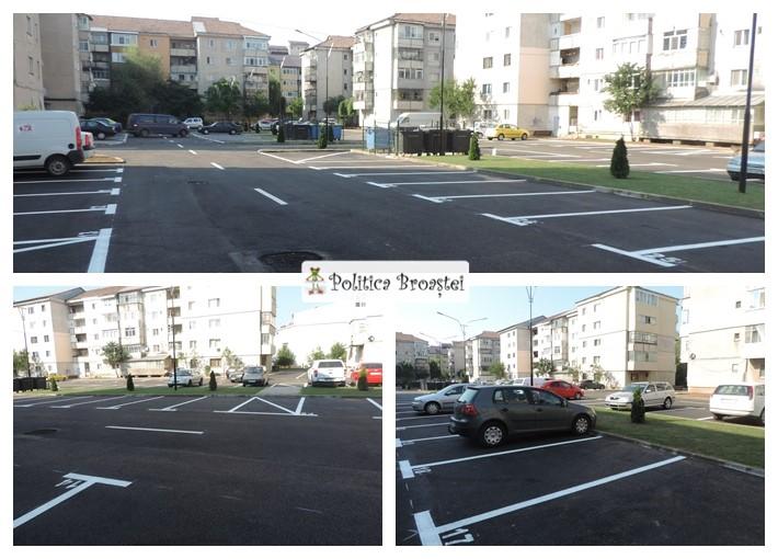 parcare micro 3 (3)