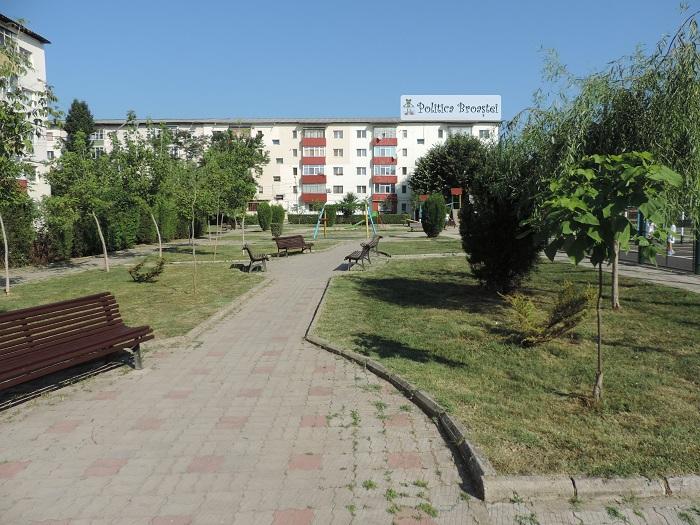parcul aschiuta (4)