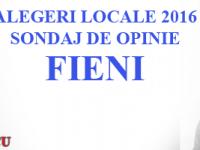 ALEGERI LOCALE 2016: Cel mai recent sondaj la nivelul orașului Fieni!