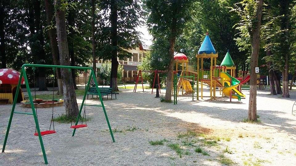 pucioasa - curatenie parc (5)