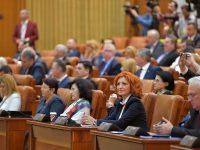 Deputatul Oana Vlăducă cere intervenția ministrului Apelor și Pădurilor în problema eroziunii de la Nucet (interpelare)