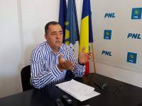 Cezar Preda, atac la ministrul Rovana Plumb: În campanie era plină de grafice! Ce-a făcut concret?