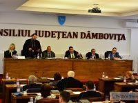 S-A VOTAT: Daniel Comănescu – noul președinte CJD! Luciana Cristea – vicepreședinte (foto ședință)