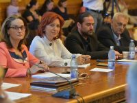 Oana Vlăducă (PRO ROMÂNIA), interpelare la ministrul Culturii cu privire la propunerile de investiții din județul Dâmbovița