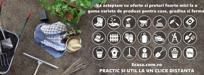 man work in the vegetable garden place a plant in the ground, icons and symbols of gardening equipment, top view