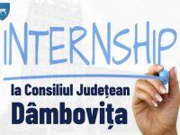 Program de Internship la CJ Dâmbovița. Azi încep înscrierile (toate detaliile)