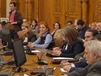 Oana Vlăducă (PSD Dâmbovița): Facilități noi pentru persoanele cu handicap și familiile acestora (detalii)