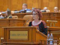 Claudia Gilia (PSD Dâmbovița): Modificări la legea privind finanțarea activității partidelor politice și a campaniilor electorale (detalii)